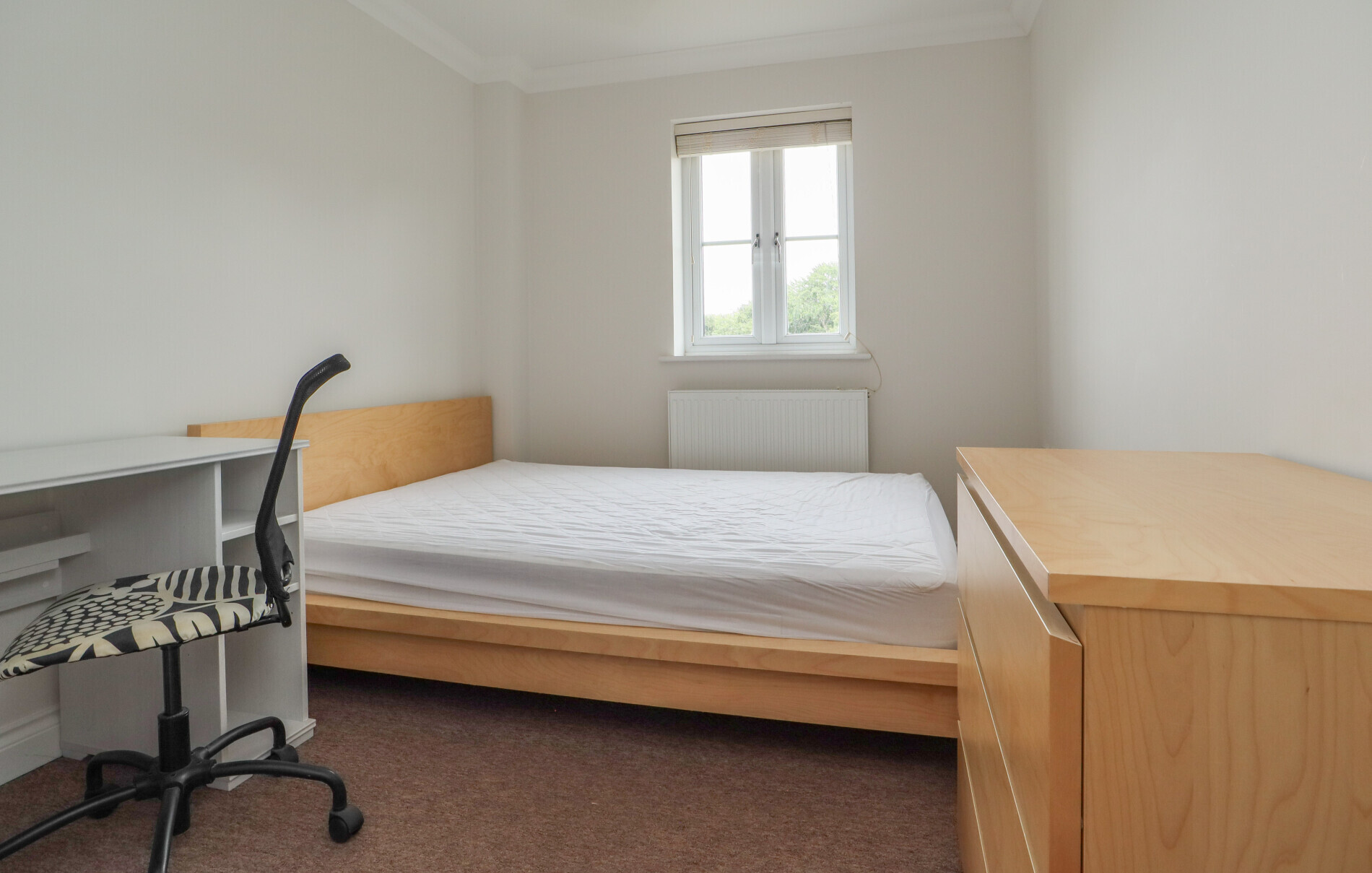 6 bedroom student house in Golden Triangle, Norwich